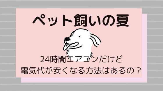 【ペット飼いの夏】24時間エアコンだけど電気代が安くなる方法はある?