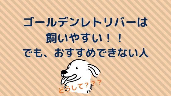 【ゴールデンレトリバーは飼いやすい】でも、おすすめできない人!!