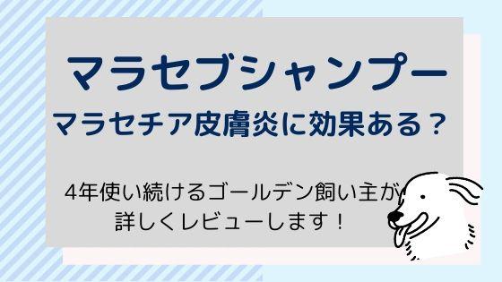 【マラセブシャンプー】マラセチア皮膚炎に効果ある?〜商品レビュー!
