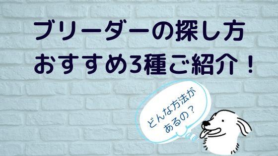 ブリーダー【ゴールデンレトリバー】の探し方〜おすすめ3種をご紹介!