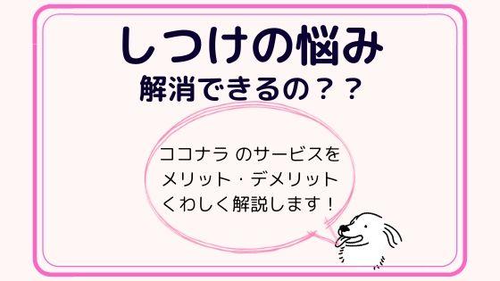 しつけの悩み(わんちゃん)をココナラで解消〜くわしく解説します!