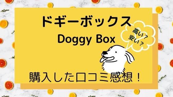 ドギーボックスは高い?安い?〜大型犬用を購入した口コミ感想!