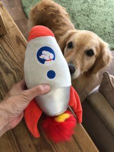 ドギーボックス(DoggyBox)8月号をレビュー!