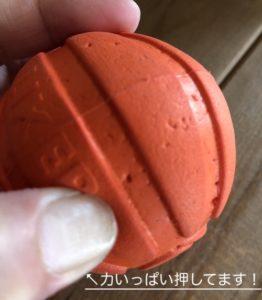 【犬のおもちゃ】ゴールデンレトリバーの一番お気に入りアイテム