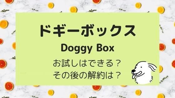 ドギーボックスはお試しできる?その後の解約は可能?
